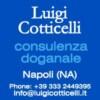 Luigi Cotticelli